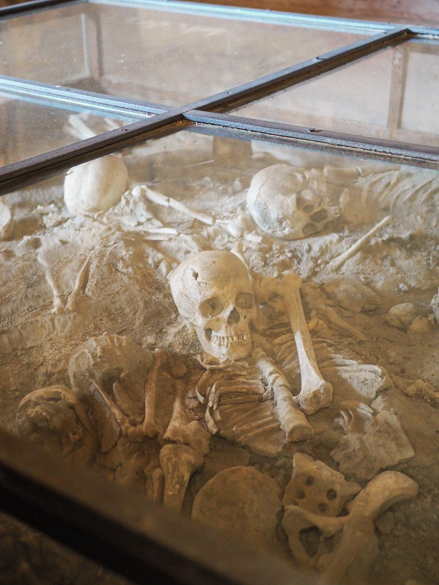 Skulls at Pompeii